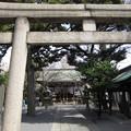 Photos: 七社神社(東京都北区)二の鳥居