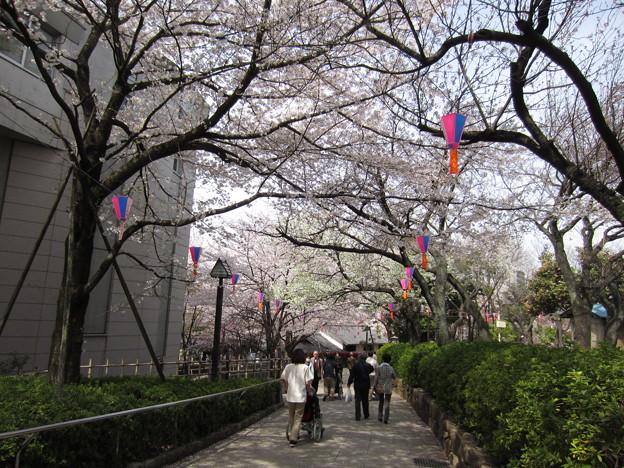 12.04.10.旧渋沢庭園/飛鳥山公園(東京都北区)渋沢史料館