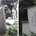 12.04.10.旧渋沢庭園/飛鳥山公園(東京都北区)船津翁碑