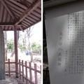 Photos: 12.04.10.旧渋沢庭園/飛鳥山公園(東京都北区)桜賦碑
