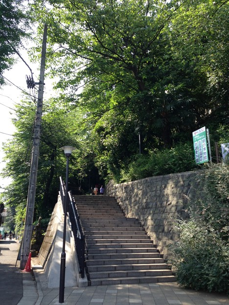 13.06.09.旧渋沢庭園/飛鳥山公園(東京都北区)