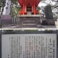 Photos: 12.04.10.王子神社(東京都北区)関神社