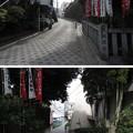 Photos: 12.04.10.王子稲荷の坂(東京都北区)