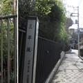 Photos: 12.04.10.名主の滝公園外(東京都北区)三平坂下