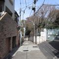 Photos: 12.04.10.名主の滝公園外(東京都北区)三平坂上