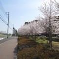 Photos: 12.04.10.清水坂(北区中十条)