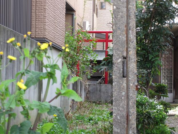 Photos: 稲付一里塚推定地(北区西赤羽)小祠