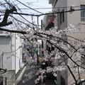 12.04.10.稲付城/静勝寺(北区西赤羽)