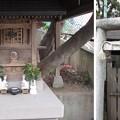 Photos: 12.04.10.稲付城/静勝寺(北区西赤羽)稲荷社