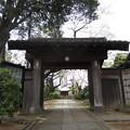 Photos: 12.04.10.稲付城/静勝寺(北区西赤羽)山門
