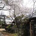 12.04.10.稲付城/静観寺(北区西赤羽)