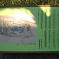 Photos: 11.01.31.加賀藩下屋敷跡内 築山跡(板橋区加賀)加賀公園