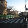 Photos: 11.01.31.御成橋北詰(板橋区加賀)