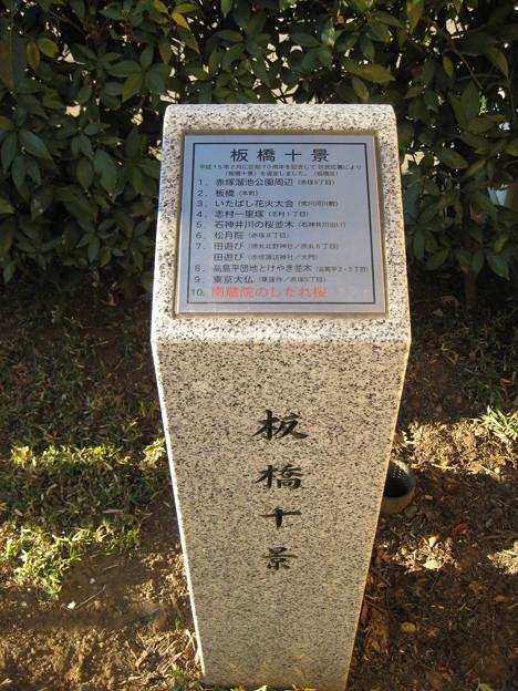 南蔵院(板橋区蓮沼町)