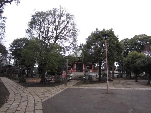 東高野山 妙楽院 長命寺 (練馬区高野台)