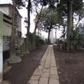 Photos: 東高野山 妙楽院 長命寺 (練馬区高野台)奥之院