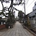 Photos: 12.02.08.東高野山 妙楽院 長命寺 (練馬区高野台)東参道