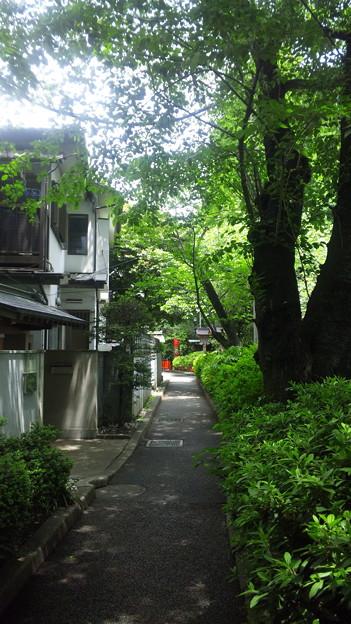 12.05.16.武蔵野稲荷神社(練馬区栄町)