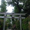 12.05.16.豊玉氷川神社(練馬区豊玉南)西鳥居