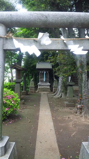 Photos: 豊玉氷川神社(練馬区豊玉南)三峰社