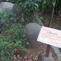 豊玉氷川神社(練馬区豊玉南)力石