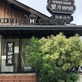 Photos: 星乃珈琲店