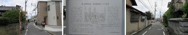 枚岡神社 一の鳥居(東大阪市)東高野街道