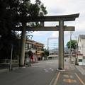 Photos: 枚岡神社(東大阪市)北鳥居