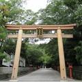Photos: 枚岡神社(東大阪市)二の鳥居