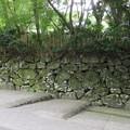 Photos: 枚岡神社(東大阪市)