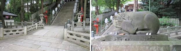 枚岡神社(東大阪市)神橋 ・神使