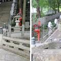 Photos: 枚岡神社(東大阪市)神橋 ・神使