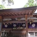 Photos: 枚岡神社(東大阪市)拝殿