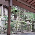 Photos: 枚岡神社(東大阪市)御神木
