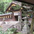 Photos: 枚岡神社(東大阪市)中門・透塀