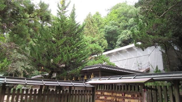 枚岡神社(東大阪市)本殿