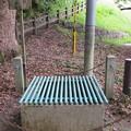 枚岡神社(東大阪市)楠木正行縁の井戸