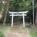 枚岡神社(東大阪市)南鳥居