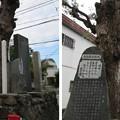 Photos: 若江城跡(東大阪市)白龍大善神社