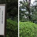 Photos: 吉村武右衛門之碑(柏原市)