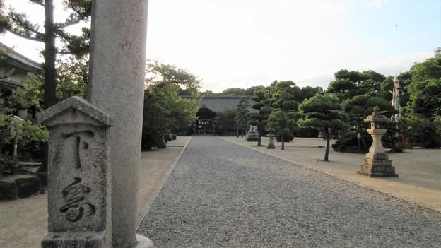 Photos: 誉田八幡宮(羽曳野市)