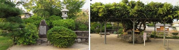 誉田八幡宮(羽曳野市)