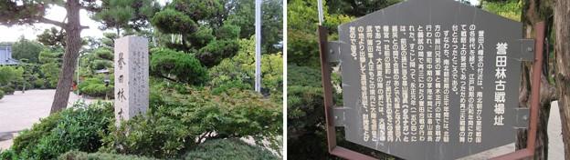 Photos: 誉田八幡宮(羽曳野市)誉田林古戦場址