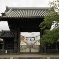 Photos: 誉田八幡宮(羽曳野市)南大門