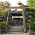 誉田八幡宮(羽曳野市)恵比寿社