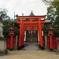 Photos: 誉田八幡宮(羽曳野市)姫待稲荷神社
