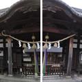 Photos: 誉田八幡宮(羽曳野市)拝殿