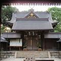 誉田八幡宮(羽曳野市)中門