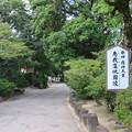 誉田八幡宮(羽曳野市)応神天皇陵参道