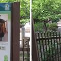 誉田八幡宮(羽曳野市)放生橋